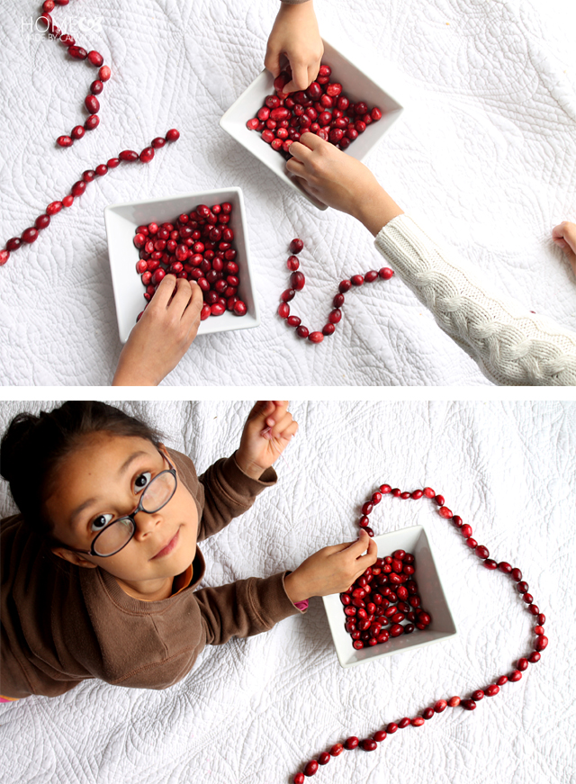 how_to_make_cranberry_garlands
