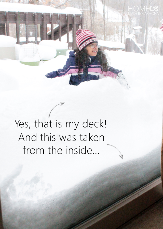 snowy deck play