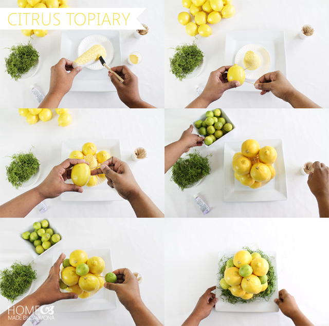 How-to-Make-A-Citrus-Topiar