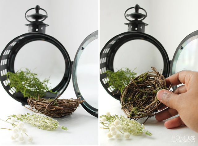 How to build a spring terrarium