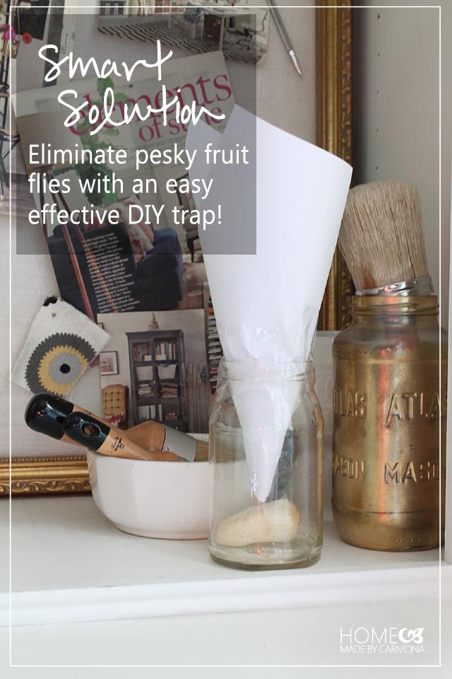 How To Get Rid Of Pesky Fruit Flies