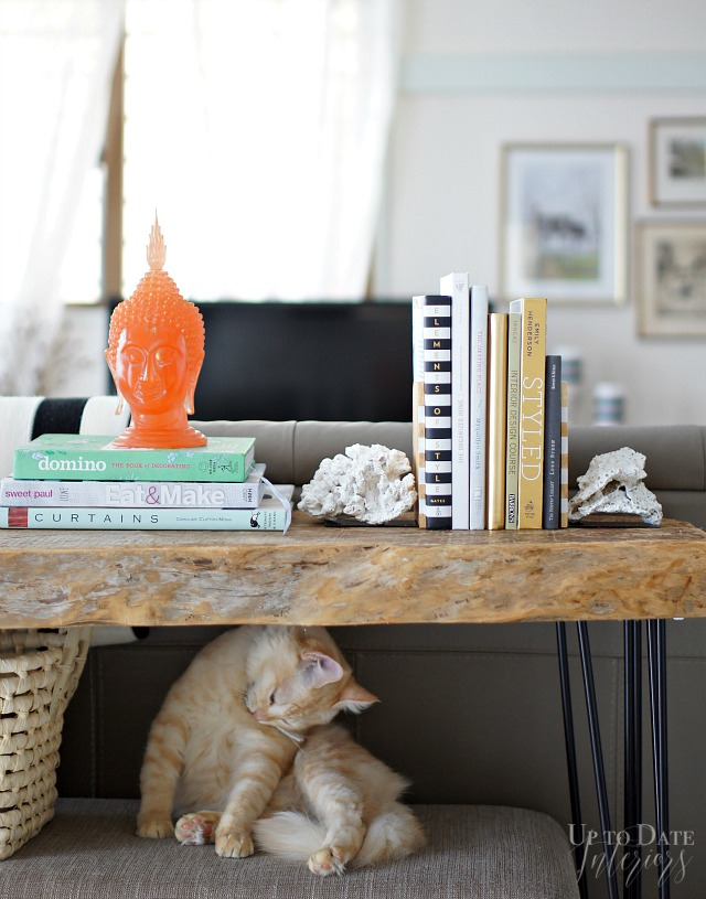 DIY Coral bookends, designer style | Up To Date Interiors