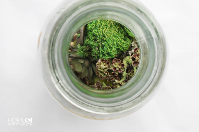 Terrarium Jar - moss and faux succulents