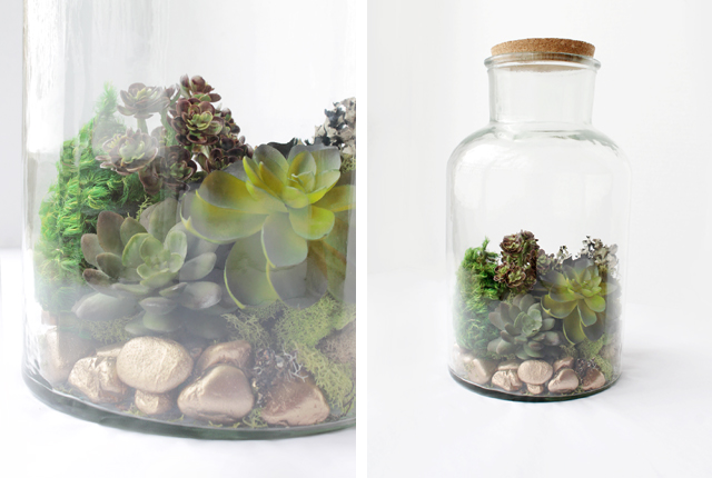 Terrarium - featured image
