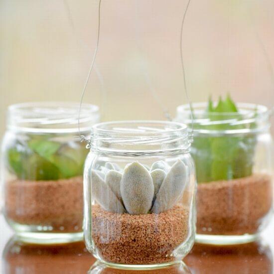 DIY-Hanging-Mini-Succulent-Jars
