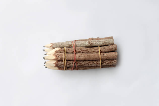 Branch and Twig Pencils from Amazon