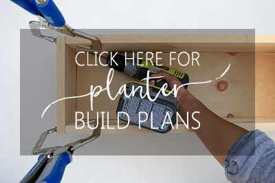 click-here-for-planter-build-plans