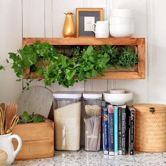vertical-wall-planter-550