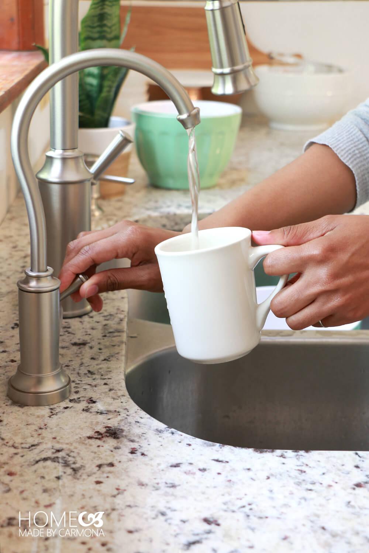 Moen Traditional Sip Faucet