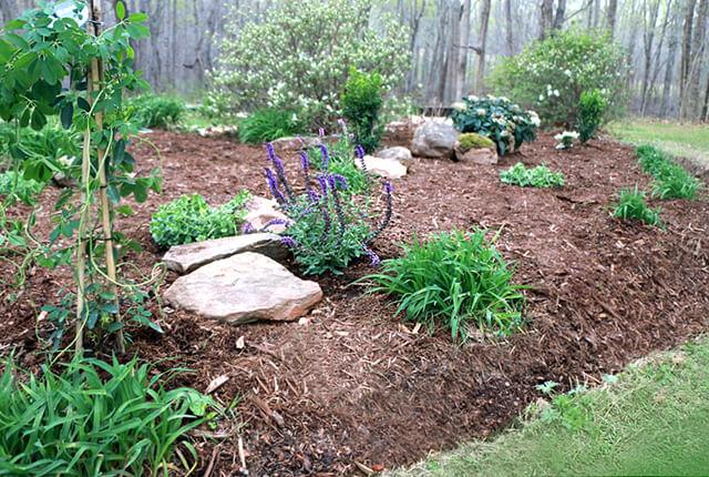 Spring garden - featured image
