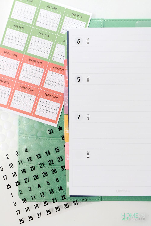 Carpe Diem Planner -daily detail planner pages