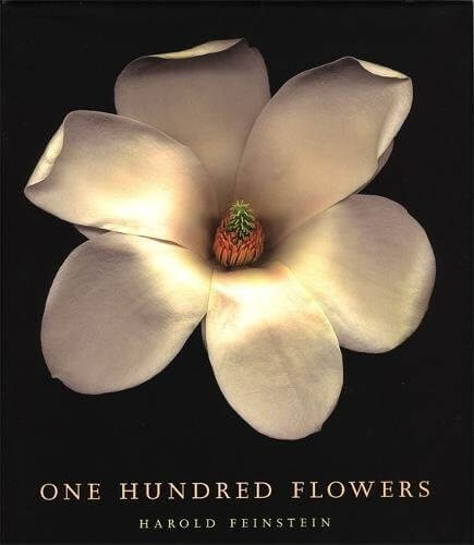 One Hundred Flowers - Harold Feinstein