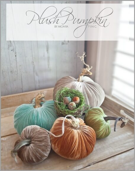Plush-Pumpkin-Graphic-bHOME