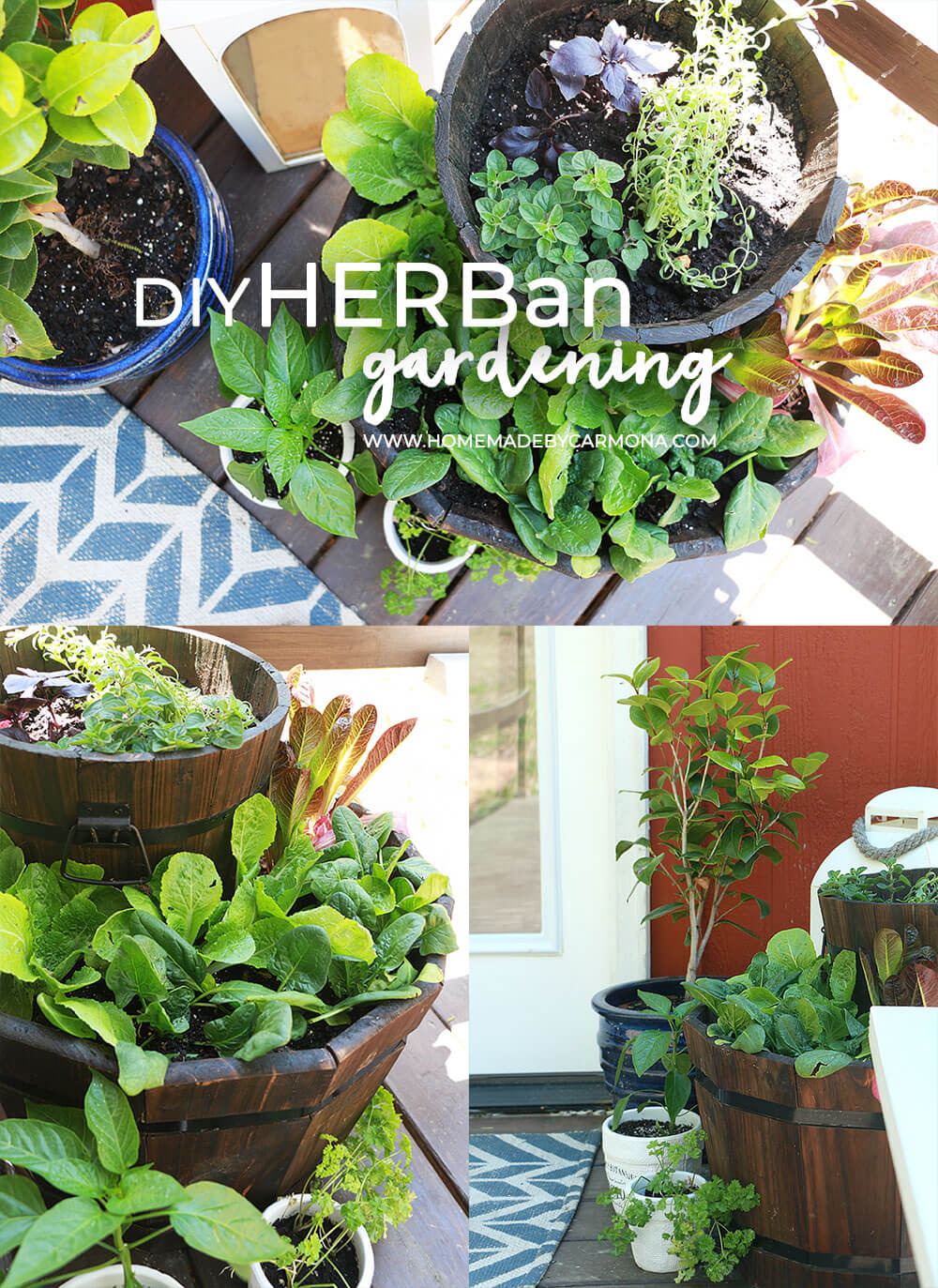 DIY-HERBan-gardening-how-to