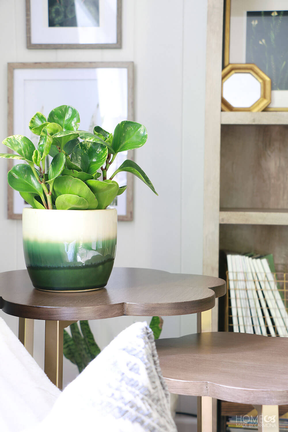 Family-room-decorating-with-plants