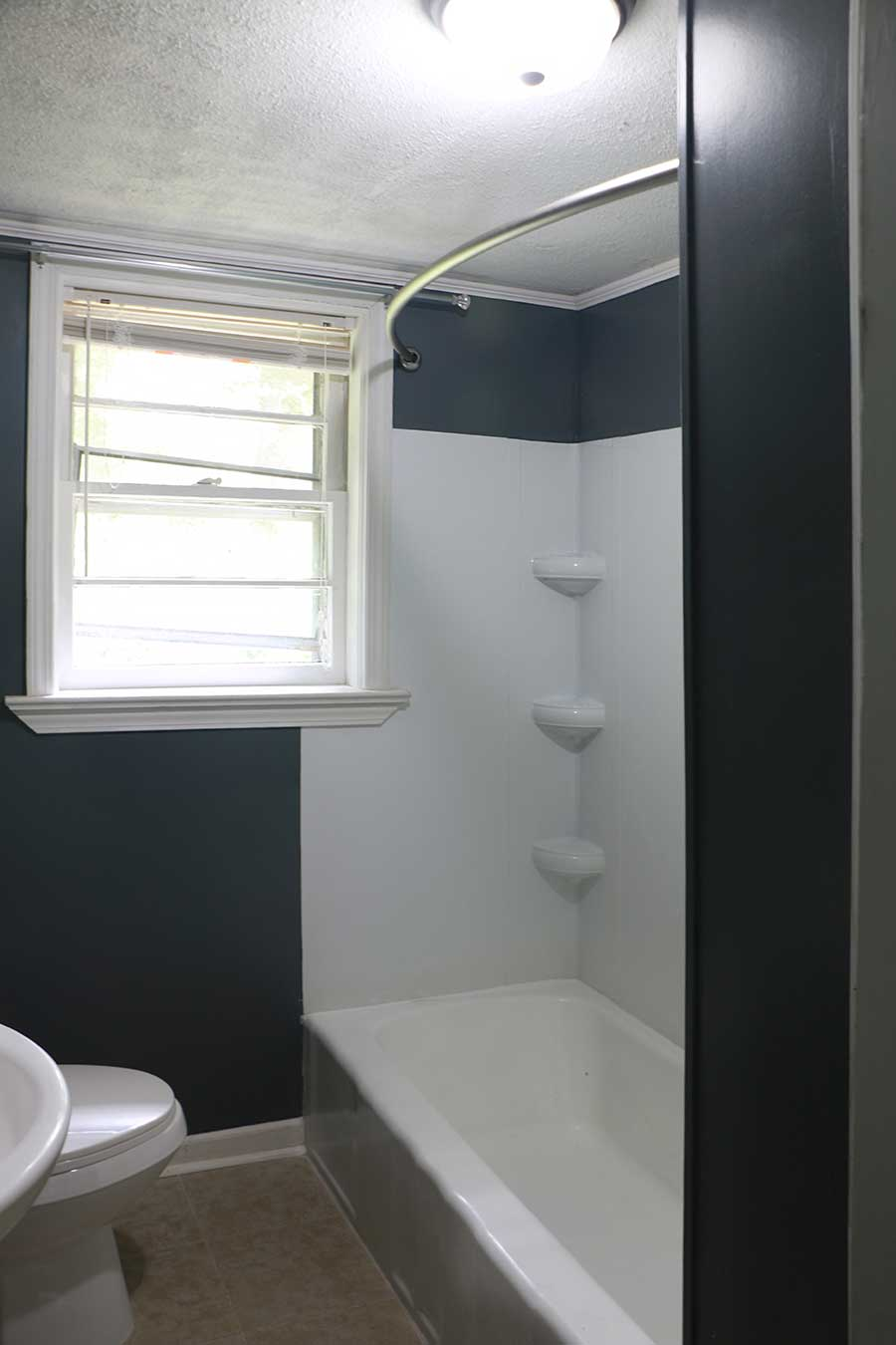 Shower bathtub with window