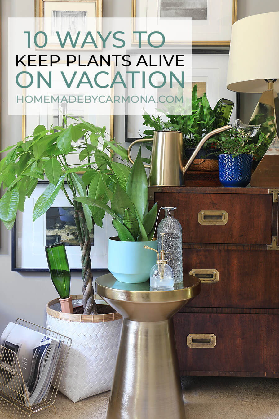 10 Ways To Keep Plants Watered On Vacation - Home Made By ... Watering Bags For House Plants on plant tanks, plant water bags, plant protection bags, plant trees, hunting bags, plant seedlings, plant wall art, dog walking bags, plant pots bags, transplant trees woven bags, shopping bags, plant shrubs, plant growing bags, plant seeds bags, christmas tree removal bags, plant cutting bags, plant transport bags, plant propagation bags,