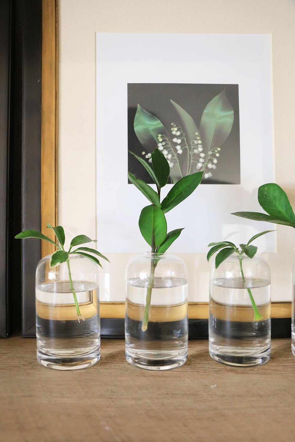Bud-vases-with-plant-cuttings