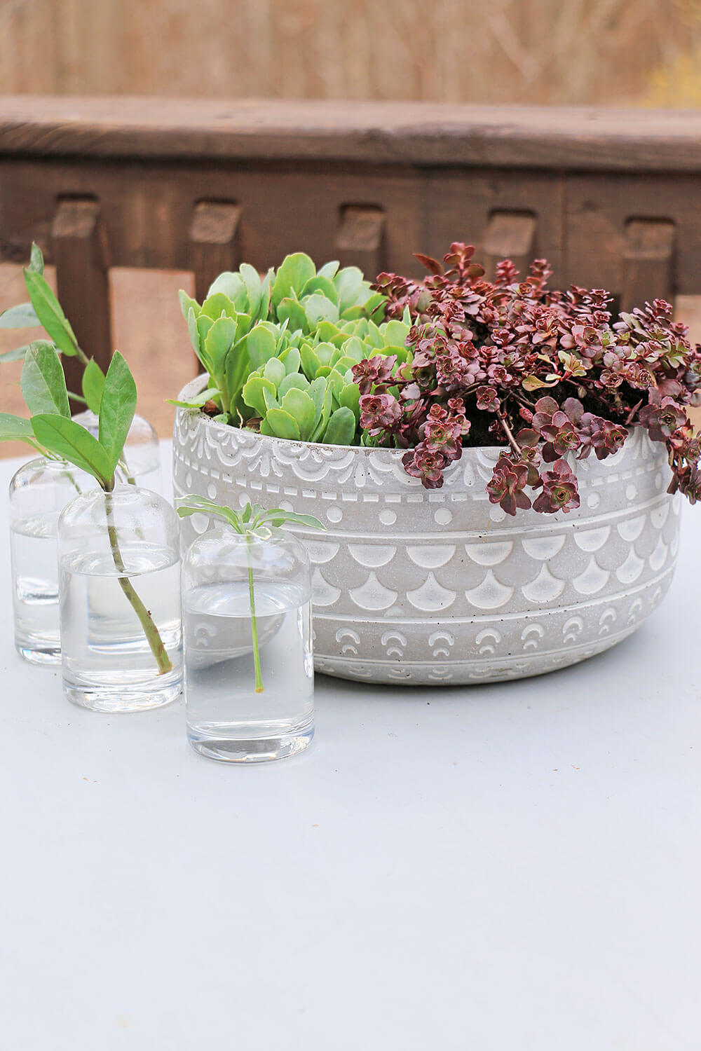 Succulent-Table-centerpiece