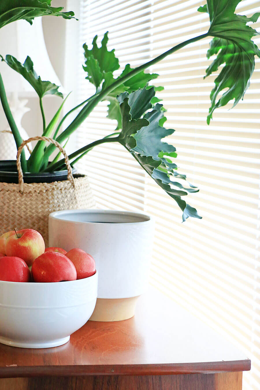Apples-in-a-bowl-and-plant-in-a-basket