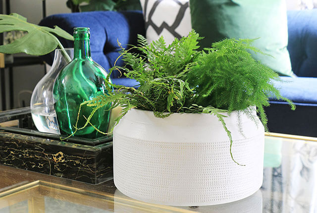 Tips-for-Decorating-with-Houseplants-FI