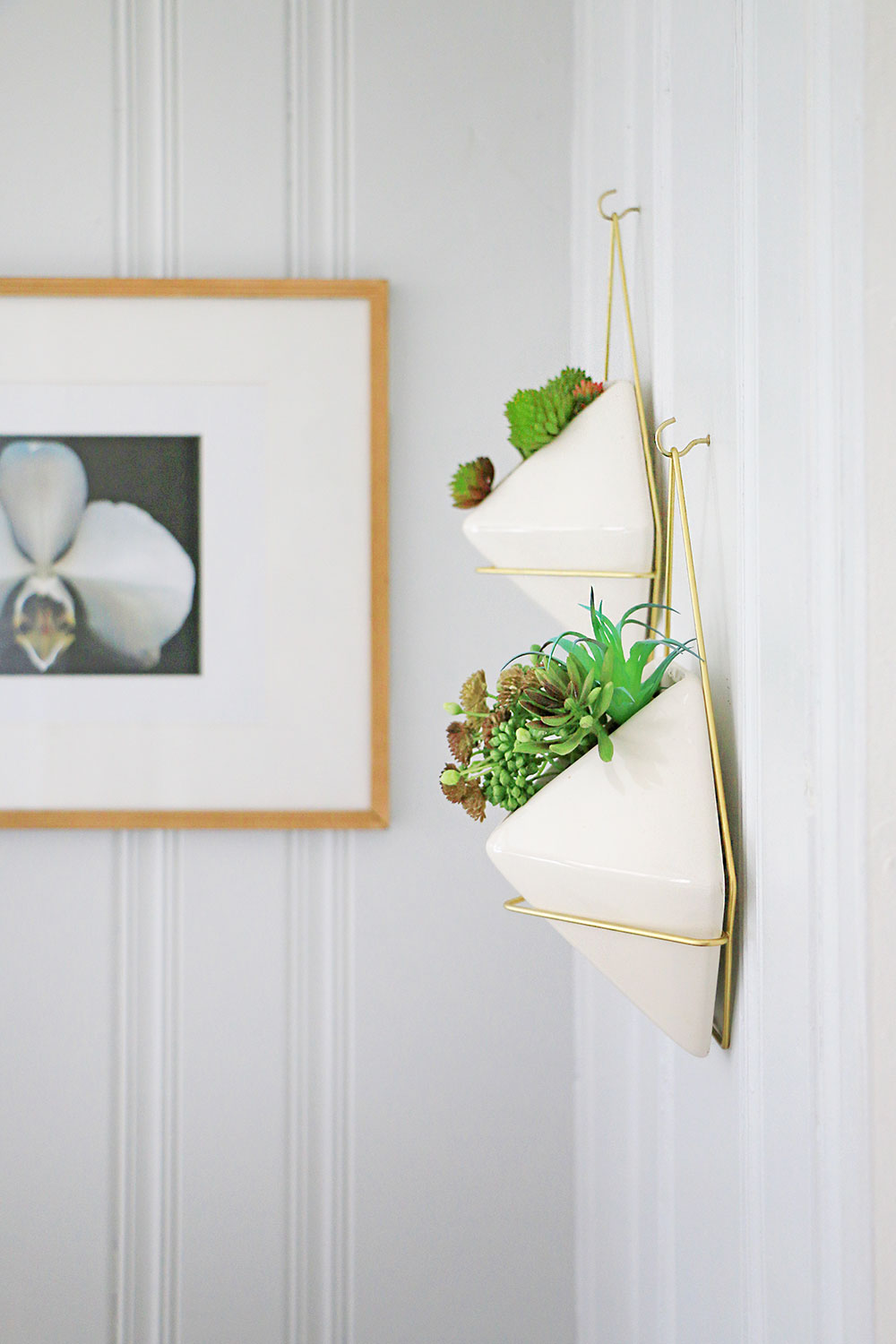 Hanging-wall-planters