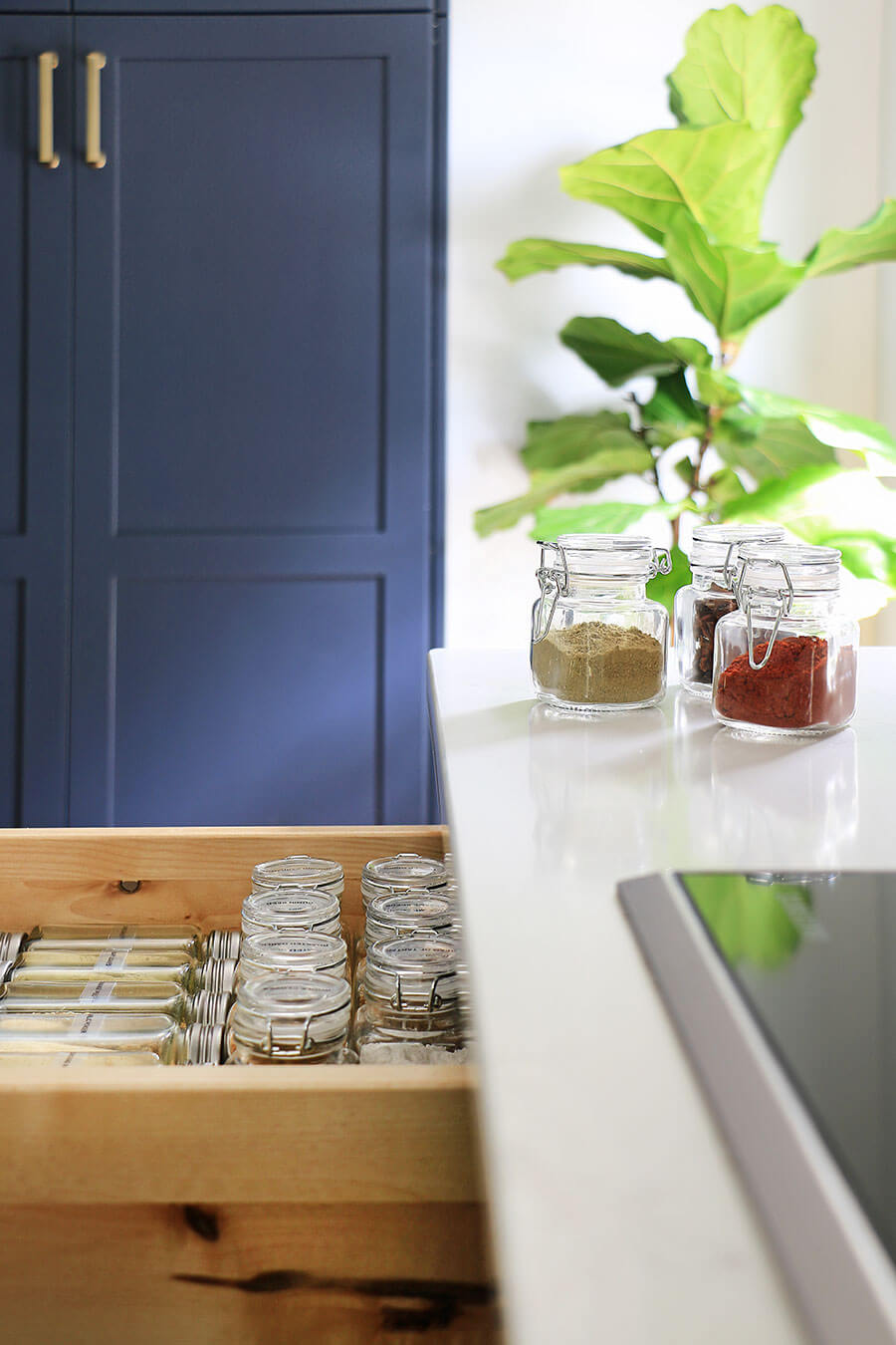 Mini-spice-containers-on-a-counter